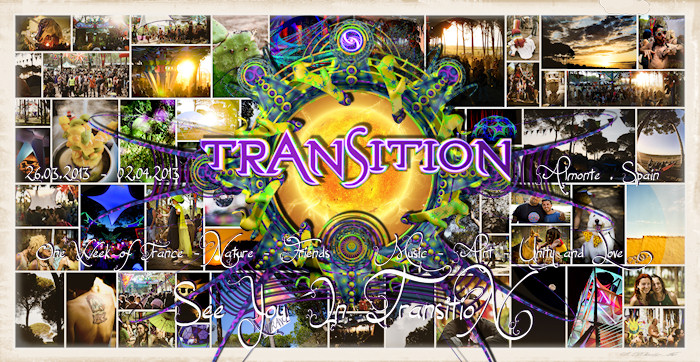 Transition Collage